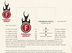 Fireball Group » Branding + Web